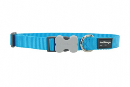 Red Dingo Plain Turquoise Dog Collar